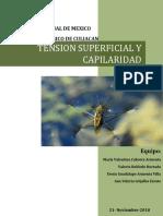 Tensión Superficial y Capilaridad (1)