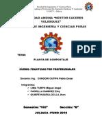 imprimir - practicas pre profesionales.docx