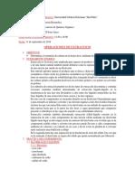 informe quimica organica 87.docx