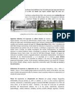 DATOS PERSONALES2
