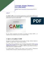 Análisis CAME.docx