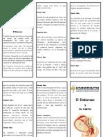 FOLLETO EMBARAO Y PARTO.docx
