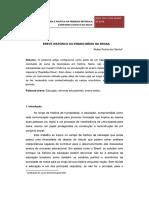 Breve história do E M no Brasil.pdf