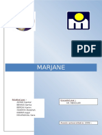 Etudes marketing Marjane.pdf