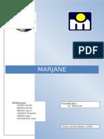 Etudes marketing Marjane.pdf