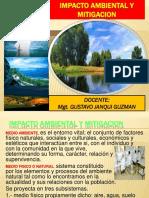 Desarrollo de Impacto Ambiental y Mitigacion