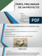 Perfil Preliminar de Un Proyecto (2)