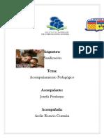 Mi Trabajo Sobre Acompañante Pedagogico 22222222