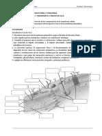 UT III Celula- Membrana y Transporte a Traves de Membrana 2018