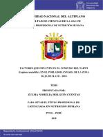 Holguin_Cuentas_Zulma_Nohelia.pdf