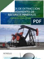 Proc Ext Rec Min AIB Marcelo Leiva.pdf