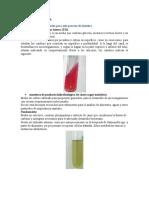 microbilogia picadura estria