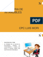 Ppt -Auditoria de Intangibles