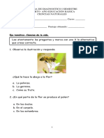 prueba de diagnostico de 4º.pdf