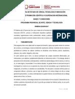 BYC PROGRAMA CIENCIA ,      ARTE Y TECNOLOGIA.pdf