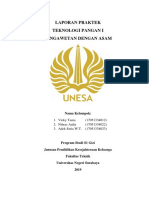 laporan acar.pdf
