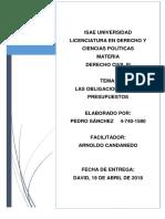 LAS OBLIGACIONES Y SU PRESUPUESTOS_PEDRO_SÁNCHEZ.docx