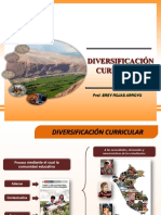DIVERSIFICACION 2012.ppt