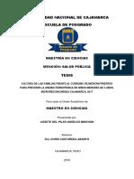 CULTURA DE LAS FAMILIAS FRENTE AL CONSUMO DE MICRONUTRIENTES PARA PREVENIR LA ANEMIA FERROPÉNICA .pdf