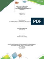 Dasarrollo Tarea 3 Determinacion Dela Vivabilidad Del Proyecto