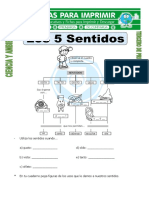 Ficha de Los Sentidos Del Cuerpo Para Segundo de Primaria (1)