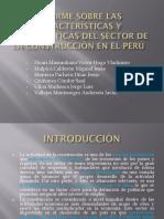 Informe Sobre Las Características y Problemáticas Del Sector
