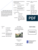 Leaflet Temulawak