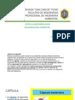 CAPSULAS MICROBIOLOGICAS-1