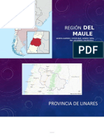 PPT REGION DEL MAULE.pptx