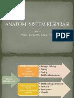 Anatomi Sistem Respirasi (IDK)
