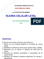 Injuria celular subletal