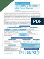 Enf Renal Cronica Guia Final 27082012