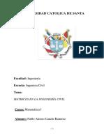 APLICACION DE MATRICES INVESTIGACION.docx