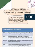 bakteri antibiyotik.pdf