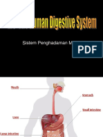 2.3 a HUman Digestive System