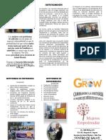 TRIPTICO Proyecto Grow  en Centro de Salud Leguia
