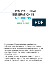 Action Potential Generation in Neurons
