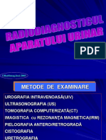 26360320 Radio Imagistica AP Urinar