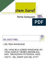 Saraf Tinjauan fisiologi