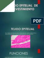 Tejido Epitelial de Revestimiento ADRIANA