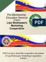 PMES2019.pdf