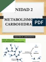 3 METABOLISMO CARBOHIDRATOS