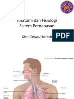 3.Sistem Respirasi