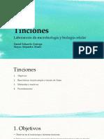 Tinciones.pptx