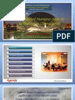 27.  La Confiabilidad Humana Clave de la Excelencia Operacional_ppt_OGP_ECCI 2018.pdf