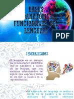 Bases Neuroanatómicas y Funcionales Del Lenguaje