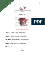 Elasticidad y Plasticidad .pdf