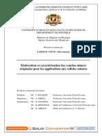 TH2747.pdf