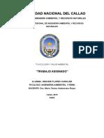 TRABAJO ASIGNADO.docx