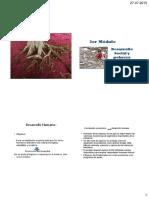 6.-POBREZA Y DESARROLLO HUMANO.pdf